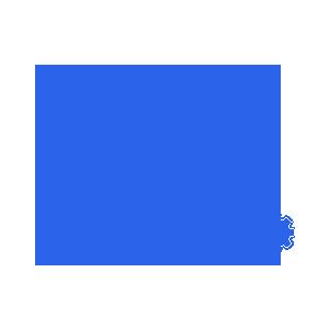 Data migration services company